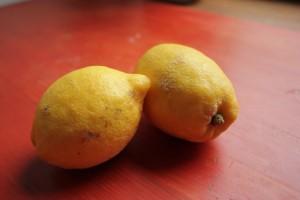Limones- Huerto de Urbano