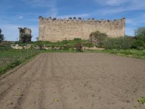 Huerta de Arroyo, Portada - Huerto de Urbano