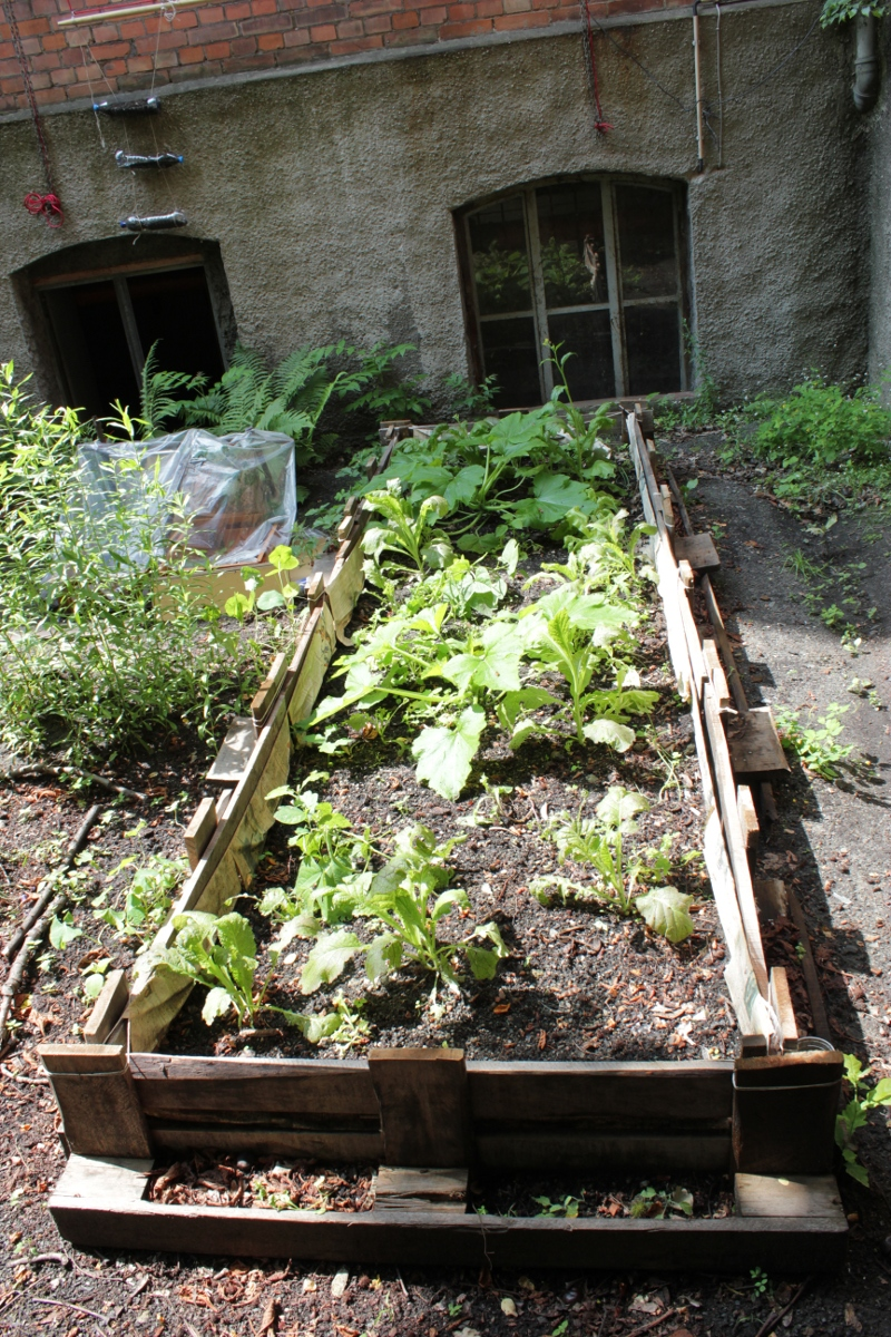 Proyectos huerto de urbano for Construir mesa de cultivo
